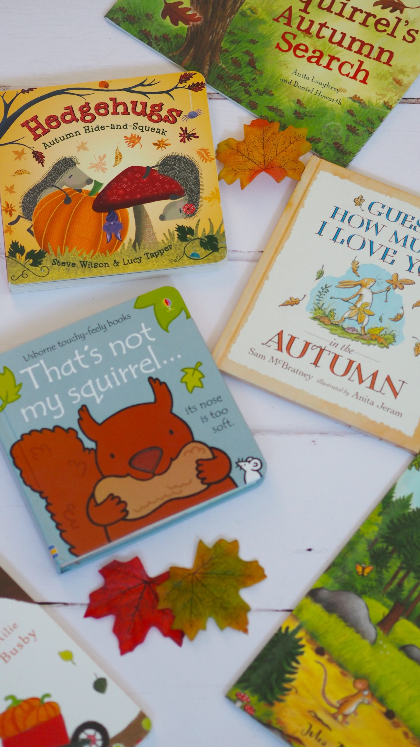Autumn Books For Toddlers | The best autumn books to help your toddler understand about Autumn.