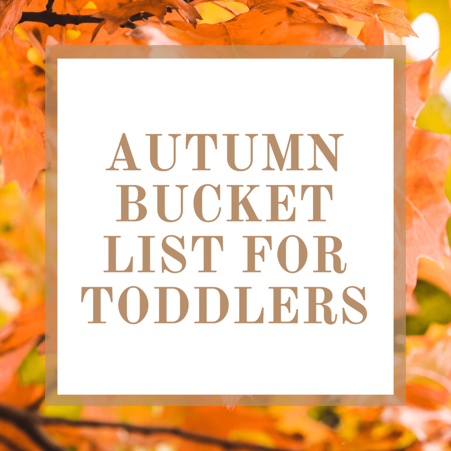 Autumn Bucket List For Toddlers | Are you looking for some fun activities this Autumn for your toddler? Find out what is on our Autumn Bucket List for Toddlers
