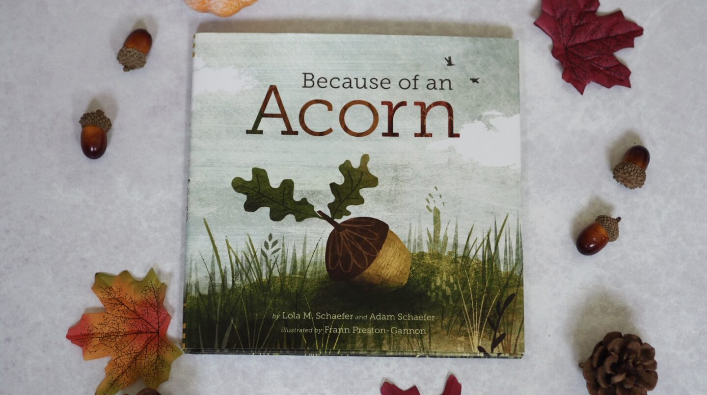 Because of an acorn Children's Book